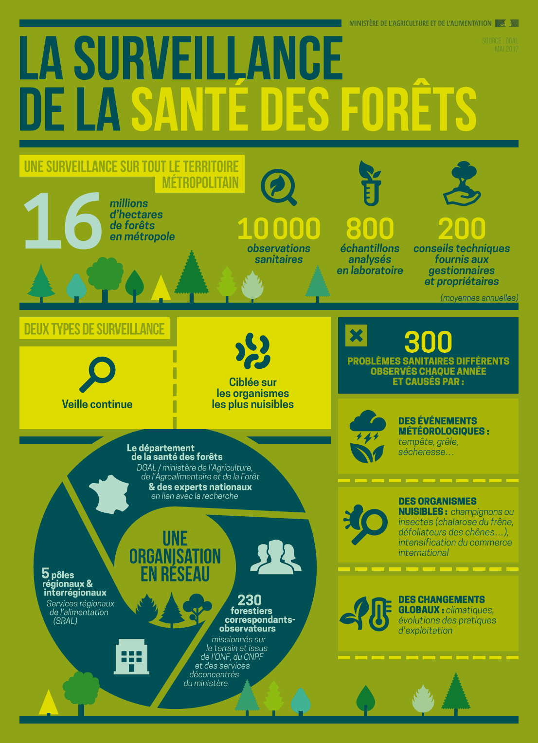 créer une infographie agence creads