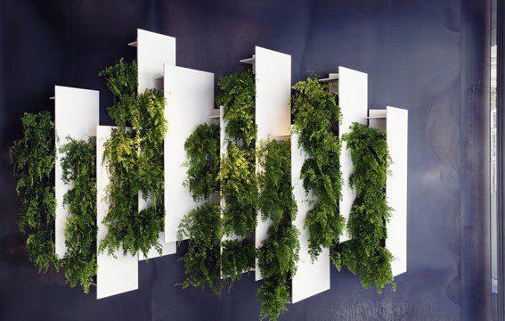 Sublime. Les oeuvres végétales du designer français Alexis Tricoire !