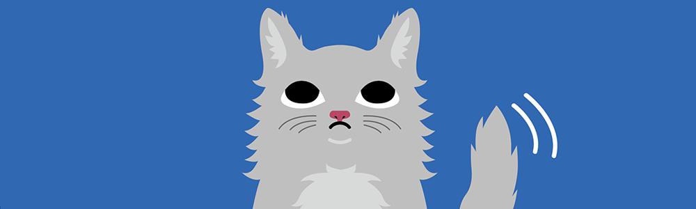 Top 10 des créations les plus inspirantes pour la Journée internationale du chat !