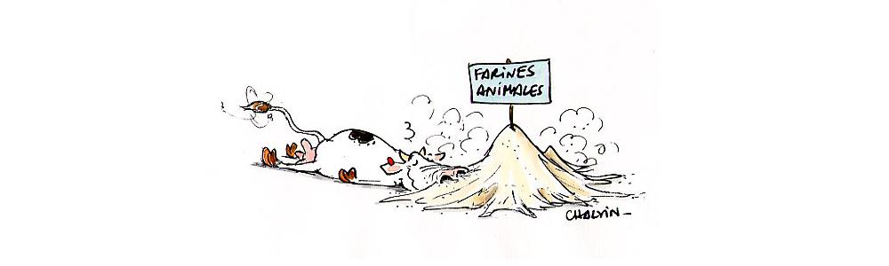 Talent à Suivre : Marc Chalvin, Illustrateur de dessins de presse