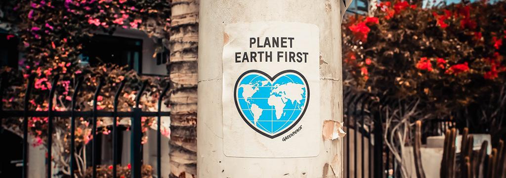 Packaging écologique : top 10 des idées les plus inspirantes