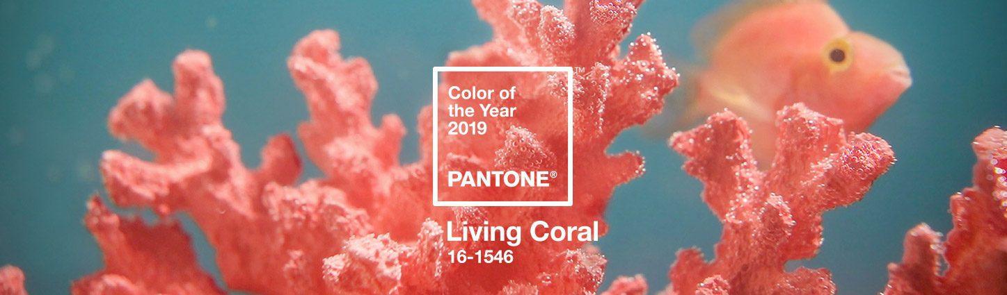 Et la couleur tendance 2019 est... Living Coral de Pantone !