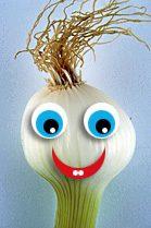 L'avatar d'oignonchocolat, membre de la communauté Creads