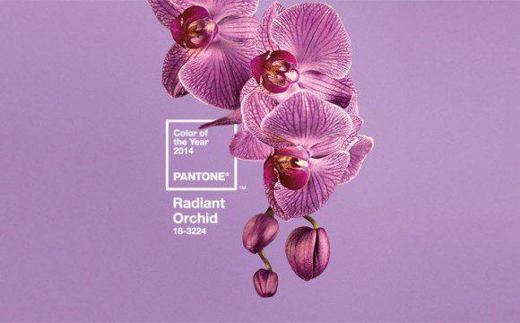Radiant Orchid, la couleur de de l'été 2014