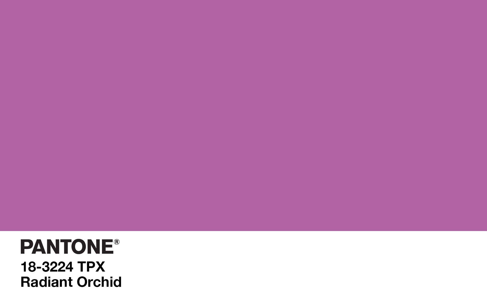Radiant Orchid par Pantone : La couleur de l'été 2014