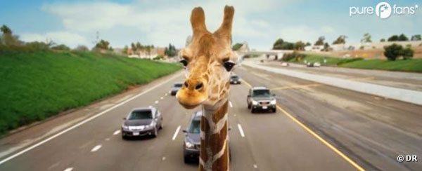 very-bad-trip-3-girafe-paroles-de-créa-oignonchocolat